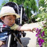 中野セントラルパーク(四季の森公園)赤ちゃん連れのママに人気!