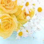 父の日に花を亡き父の仏壇にお供えしたい!おすすめの花は?
